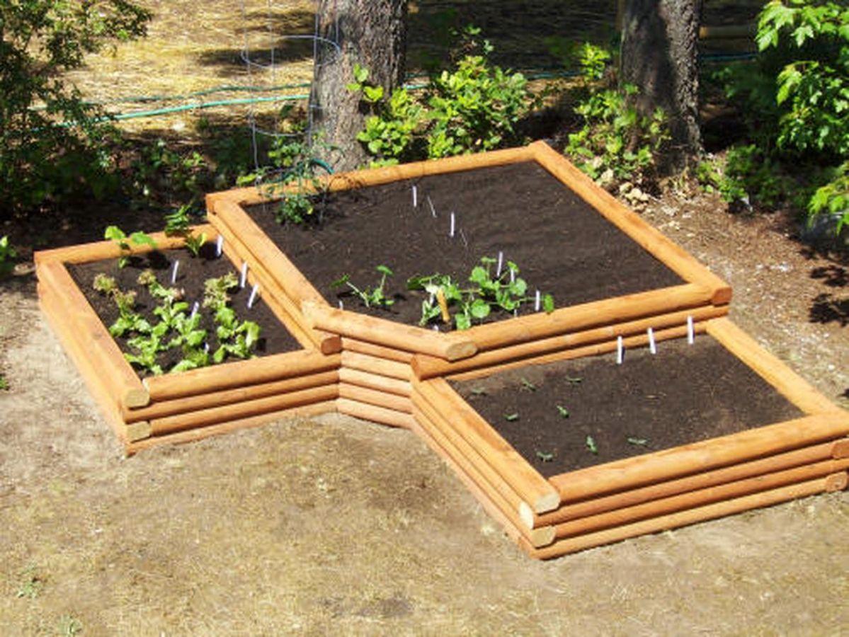 Affordable backyard vegetable garden designs ideas 21