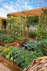 Affordable backyard vegetable garden designs ideas 23