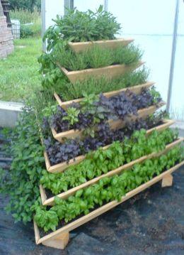 Affordable backyard vegetable garden designs ideas 26