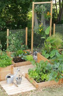 Affordable backyard vegetable garden designs ideas 27