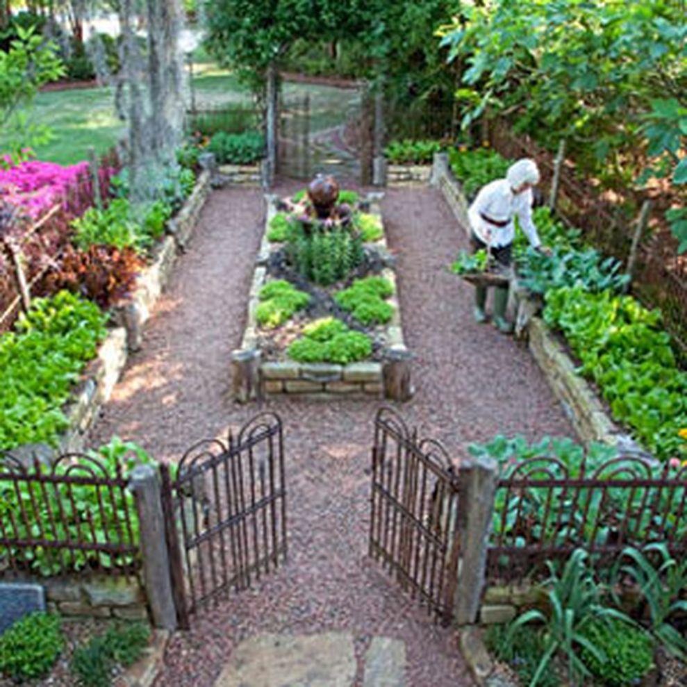 Affordable backyard vegetable garden designs ideas 29