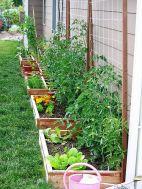 Affordable backyard vegetable garden designs ideas 35