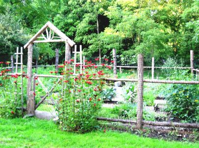 Affordable backyard vegetable garden designs ideas 45