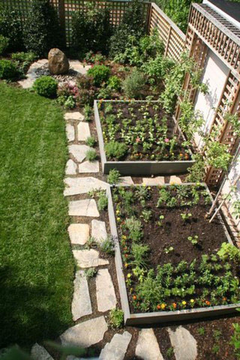 Affordable backyard vegetable garden designs ideas 47