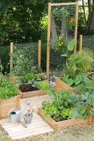 Affordable backyard vegetable garden designs ideas 48