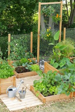 Affordable backyard vegetable garden designs ideas 53