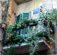 Amazing small balcony garden design ideas 03