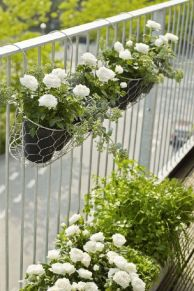 Amazing small balcony garden design ideas 37