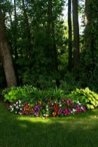 Beautiful flower garden decor ideas everybody will love 22