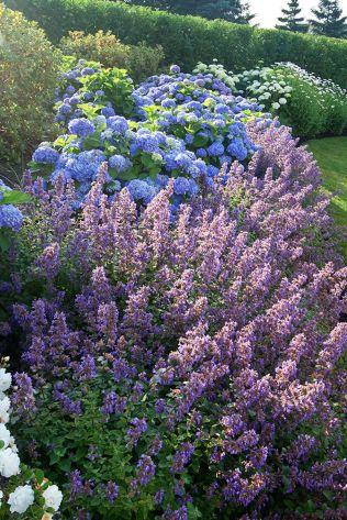 Beautiful flower garden decor ideas everybody will love 52