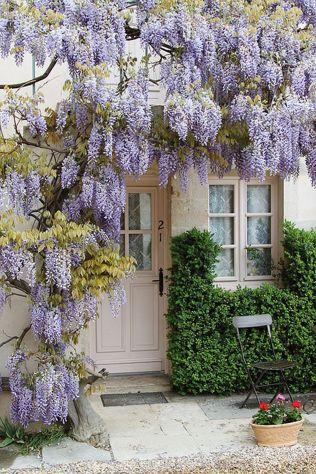 Beautiful french cottage garden design ideas 68
