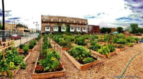 Cute and simple school garden design ideas 29
