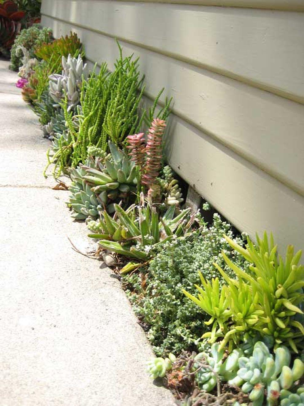 Cute and simple tiny patio garden ideas 51