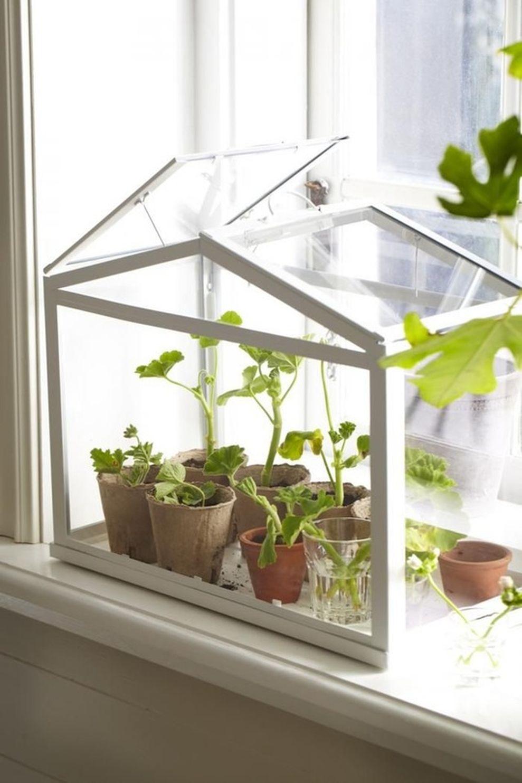 Cute and simple tiny patio garden ideas 86