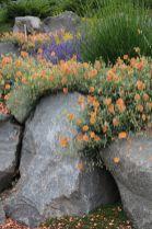 Stunning garden design ideas with stones 13