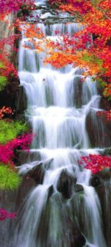 Stunning japanese garden ideas plants you will love 10