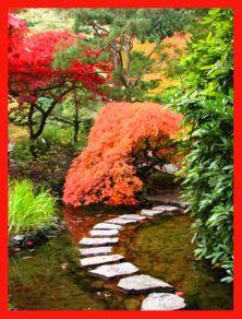 Stunning japanese garden ideas plants you will love 25