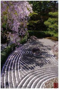 Stunning japanese garden ideas plants you will love 28