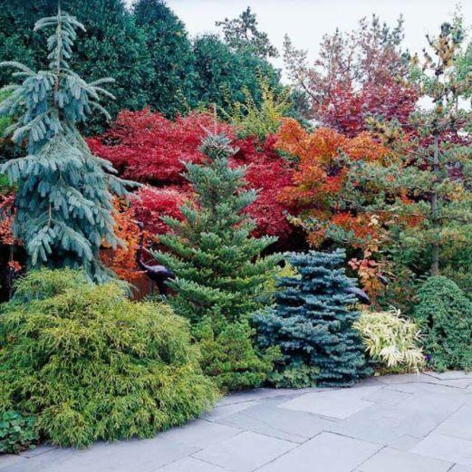 Stunning japanese garden ideas plants you will love 35