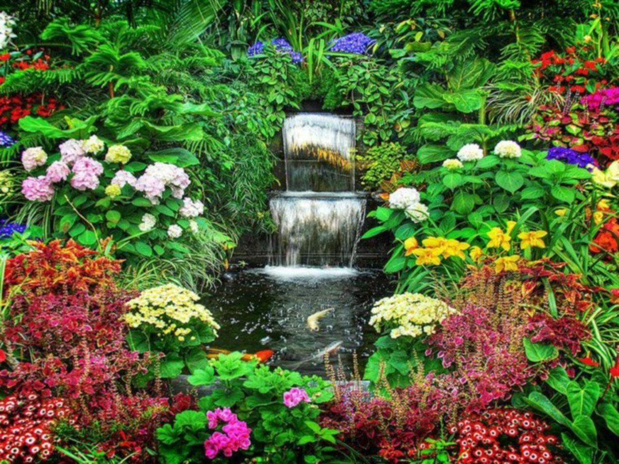 Lovely Stunning Japanese Garden Ideas Plants You Will Love 38