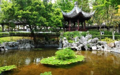 Stunning japanese garden ideas plants you will love 41