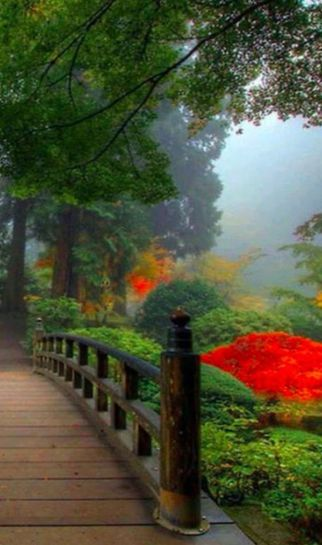 Stunning japanese garden ideas plants you will love 55
