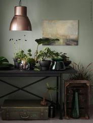 Stylish dark green walls in living room design ideas 12