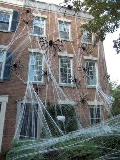Creative diy halloween decorations using spider web 49