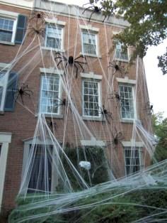 Creative diy halloween decorations using spider web 49
