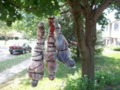 Creative diy halloween outdoor decoration ideas 07