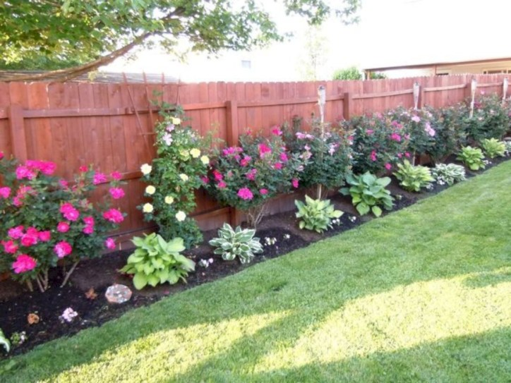 Diy backyard privacy fence ideas on a budget (20)