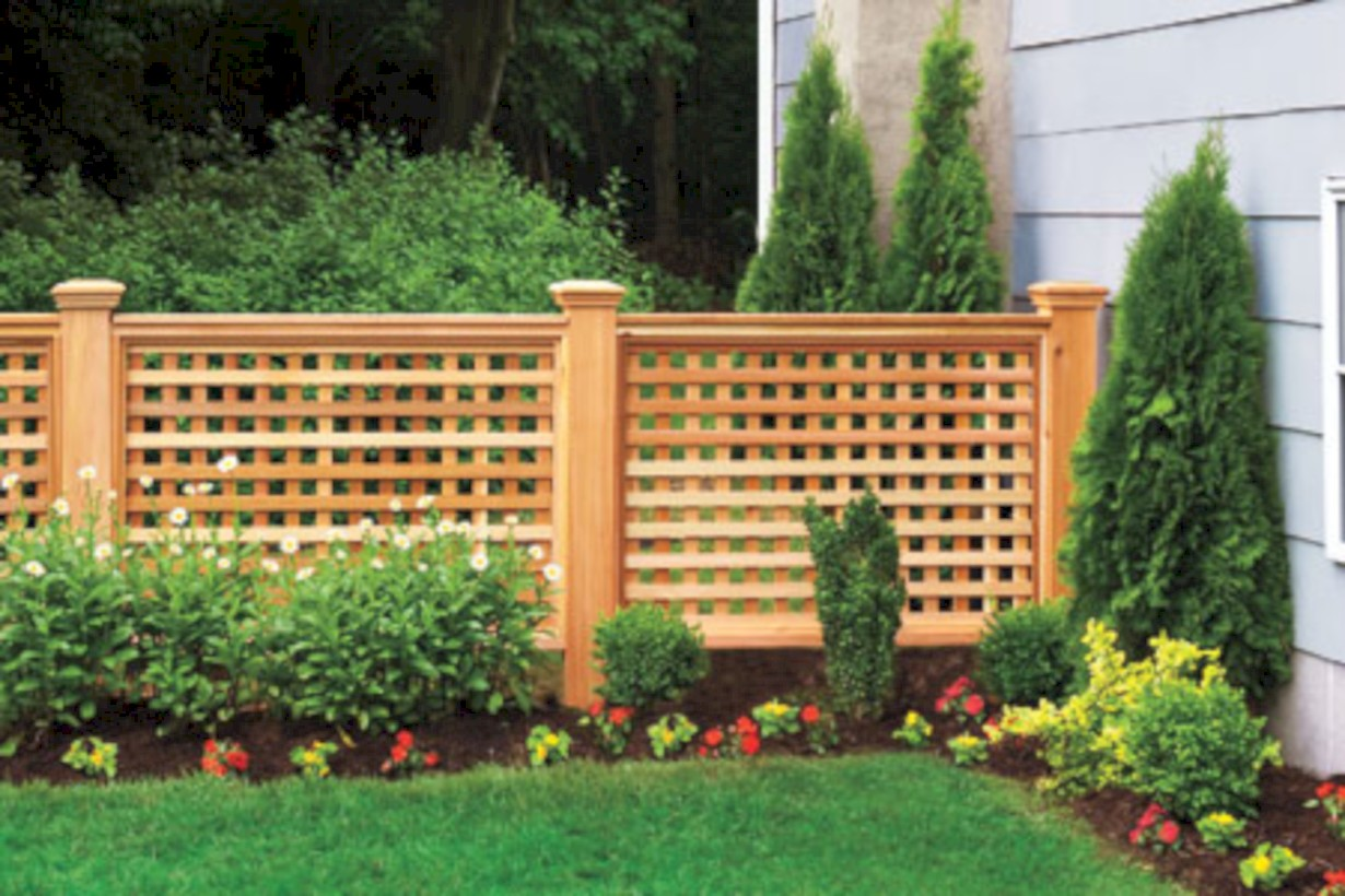 Diy backyard privacy fence ideas on a budget (43)