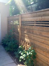 Diy backyard privacy fence ideas on a budget (54)