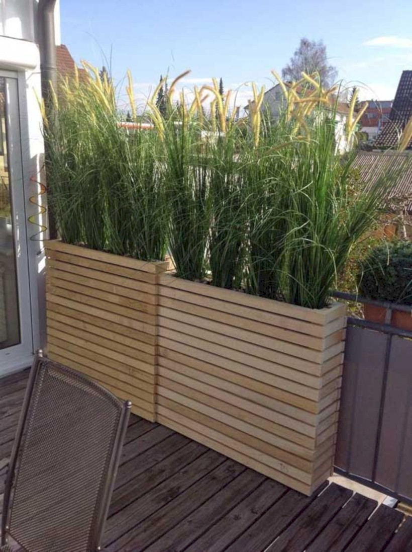 Diy backyard privacy fence ideas on a budget (8)
