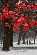 Cool homemade outdoor christmas decorations ideas 05
