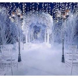 Spectacular winter wonderland wedding decoration ideas (26)