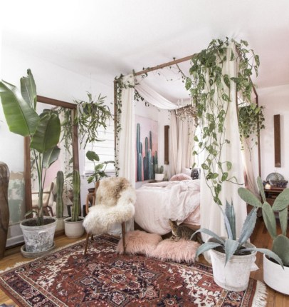 Stunning indoor plants ideas for your living room and bedroom 12