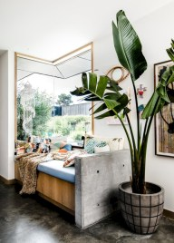 Stunning indoor plants ideas for your living room and bedroom 21