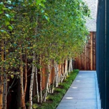 Beautiful small garden design ideas on a budget (14)