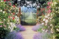 Stunning front yard entrance path walkway landscaping ideas 05