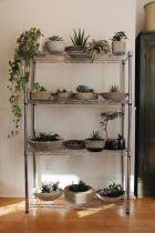 Creative diy indoor succulent garden ideas (11)