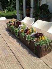 Creative diy indoor succulent garden ideas (24)