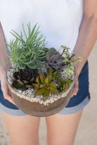 Creative diy indoor succulent garden ideas (31)