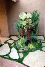 Creative diy indoor succulent garden ideas (38)