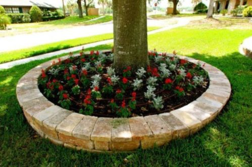 Best and beautiful tree ring planter ideas 01