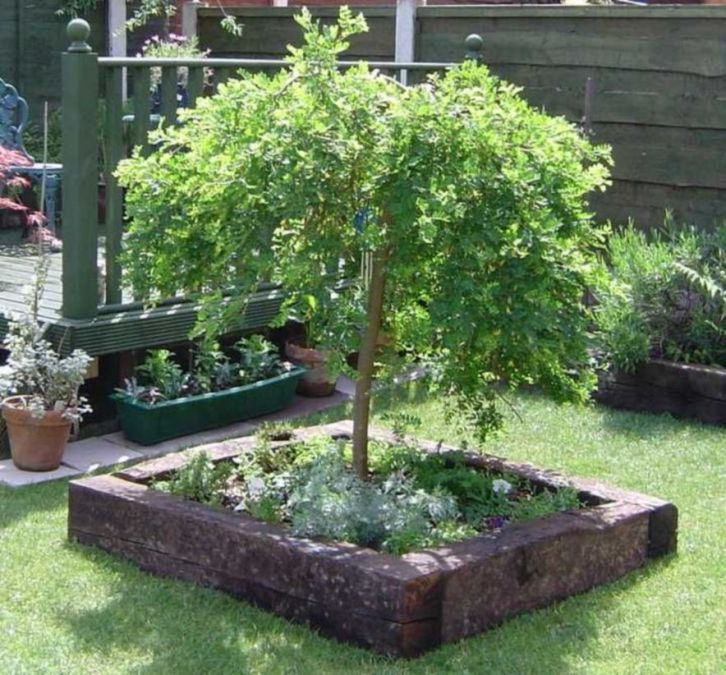 Best and beautiful tree ring planter ideas 08