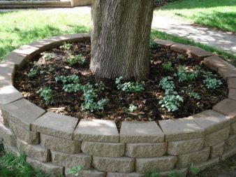 Best and beautiful tree ring planter ideas 10