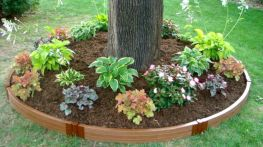 Best and beautiful tree ring planter ideas 22