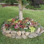 Best and beautiful tree ring planter ideas 30
