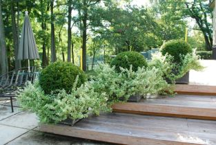 Best and beautiful tree ring planter ideas 37